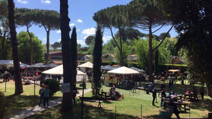 Alt text Egeria Summer Festival