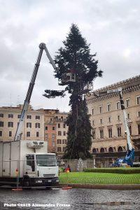 alt tag albero di natale