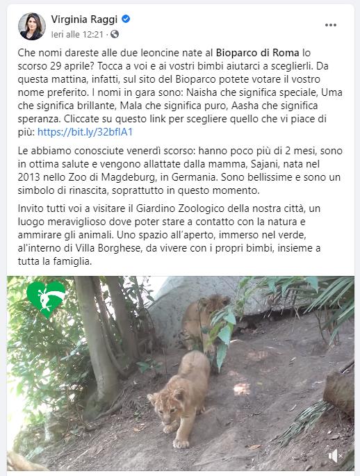 alt tag bioparco di roma